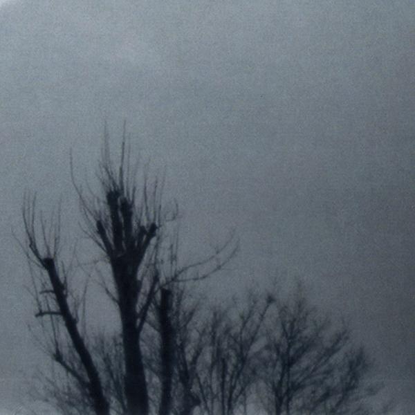 Image de la série vent des draps chasseur de nuages de Thérèse Pitte Photogrape Plasticienne