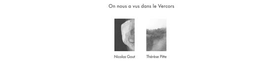 Affiche Le Salon Reçoit Thérèse Pitte